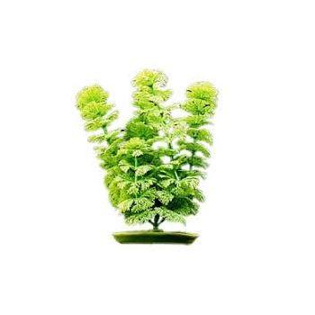 Ambulia sztuczna roślina 38 cm