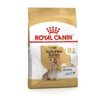 Karma sucha Yorkshire Terrier 8+