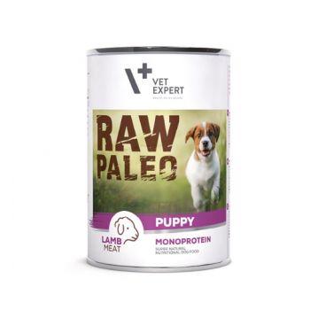 Raw Paleo Puppy karma dla szczeniąt z jagnięciną 400 g