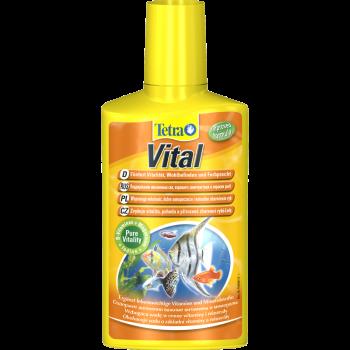 Vital preparat witaminowo-mineralny