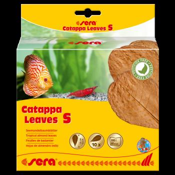 Catappa Leaves liście migdałecznika S 10 szt.