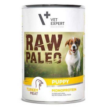 Raw Paleo Puppy karma dla szczeniąt z indykiem