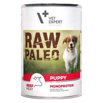 Raw Paleo Puppy karma dla szczeniąt z wołowiną