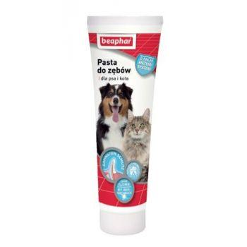 Pasta do zębów dla psów i kotów 100 g