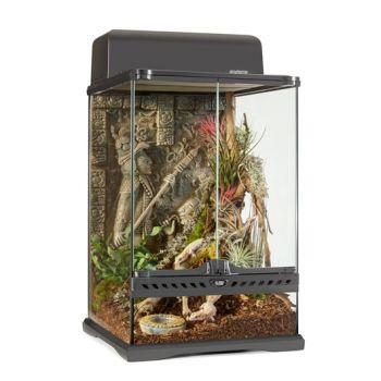 Aztec terrarium mini 30 x 30 x 45 cm