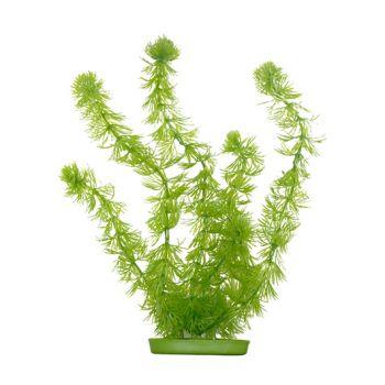 Hornwort sztuczna roślina 20 cm
