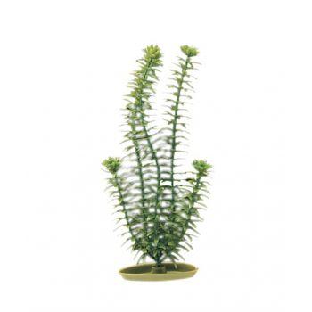 Anacharis sztuczna roślina 12,5 cm