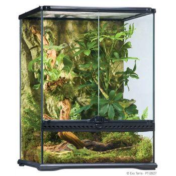Terrarium szklane S 45 x 45 x 60 cm