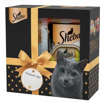 Zestaw świąteczny dla kota